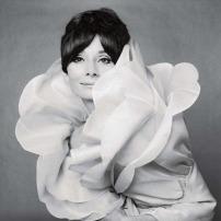 Audrey-Hepburn-photo-Audrey-Hepburn